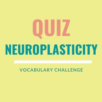 Vocabulary Challenge Quiz: Neuroplasticity